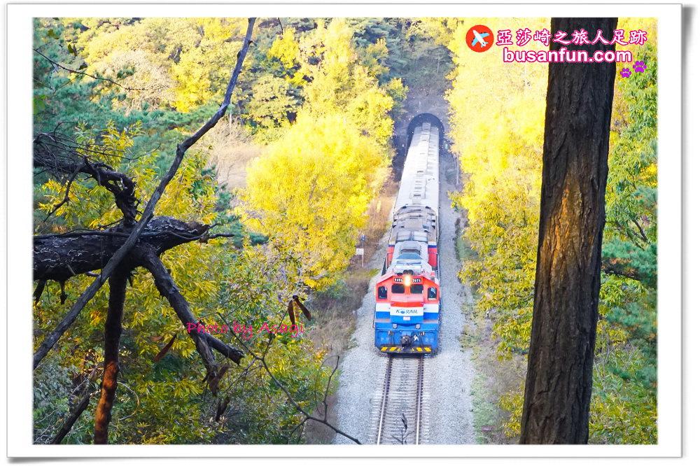 韓國交通》如何購買火車票?如何上網預訂?如何退票?|KTX高鐵、新村號、無窮花號火車票購買