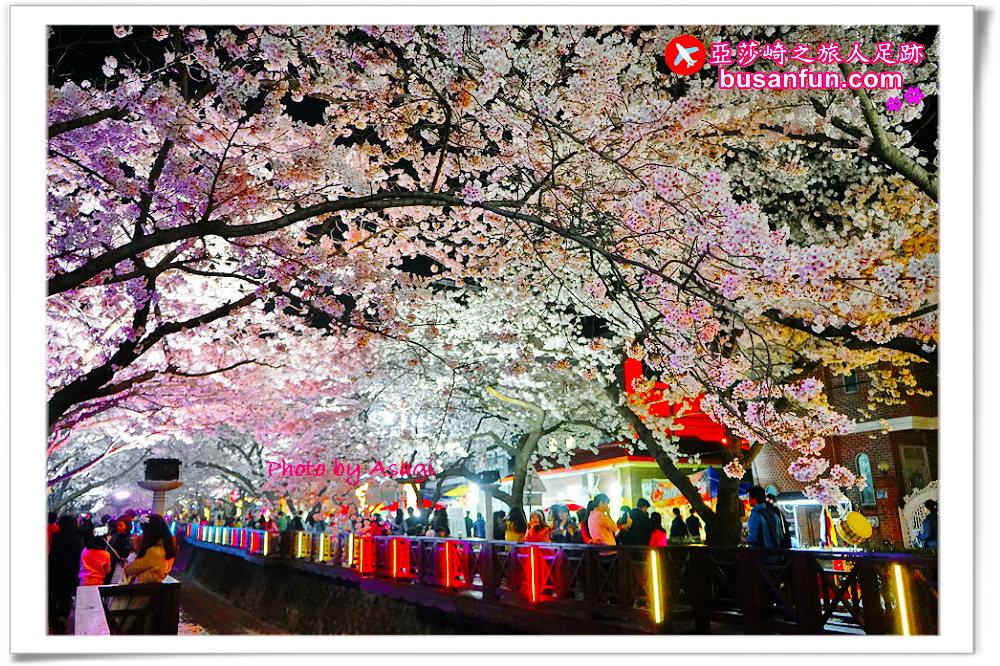 如何從釜山到鎮海?想去昌原參加鎮海櫻花軍港節嗎?交通方式看這篇!