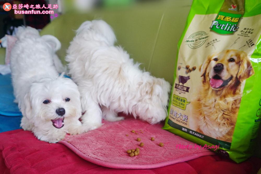 寶多福寵物美食犬餐牛肉雞肉口味飼料推薦|給我的寵物家人吃好的食物