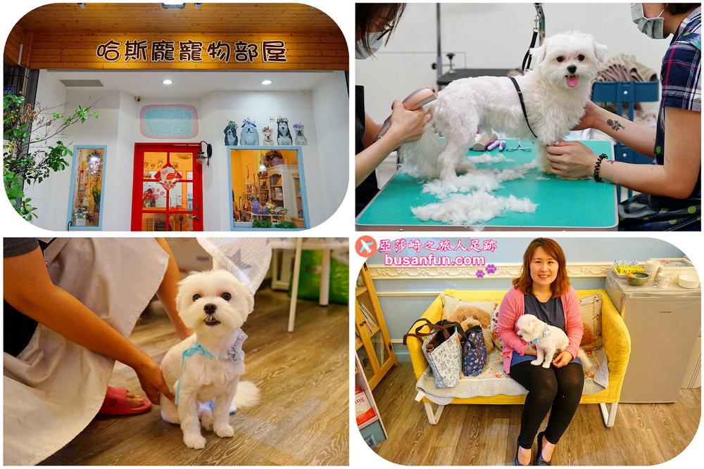 哈斯龐寵物部屋對狗狗親切有耐心 台中寵物美容推薦洗澡剪毛SPA清潔