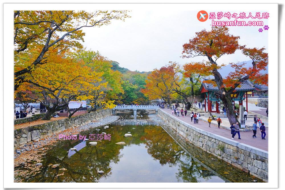 韓國賞楓|通度寺怎麼去?交通指引篇|從釜山出發