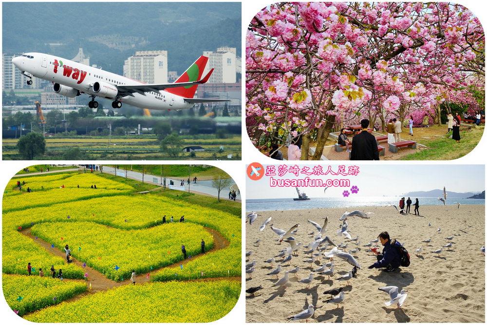 釜山美食景點精選+德威航空購票流程、優惠資訊、亞莎崎讀者優惠券