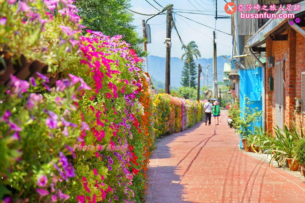 南庄私房景點|南庄情人巷媲美西班牙百花巷浪漫繽紛